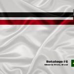 Nova peneira do Botafogo -SP!