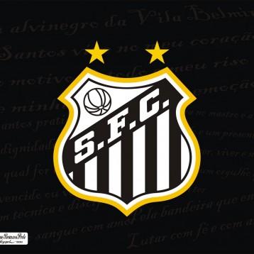 Santos F.C fará peneira no Guarujá!